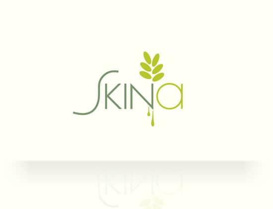 logo_skina